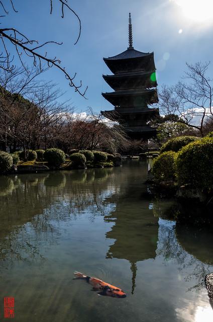 「映える光景」 東寺 - 京都