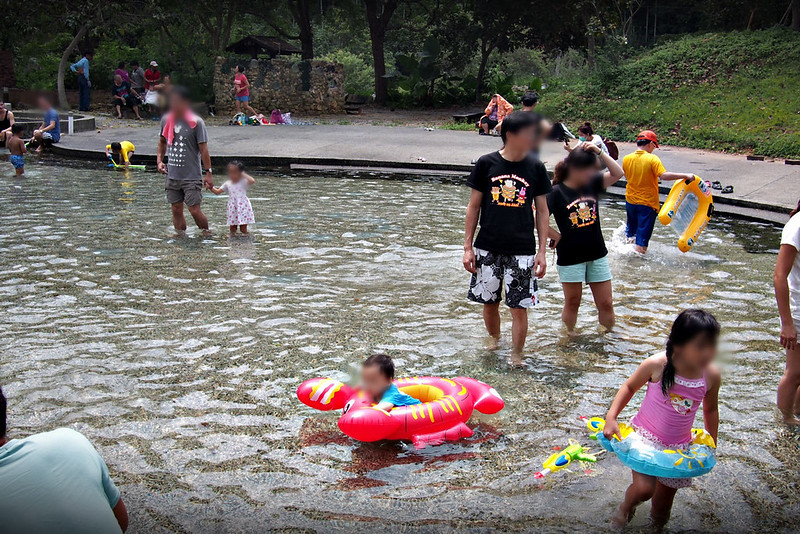 3桃米親水公園(桃米生態區戲水池)