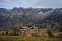paisatgers d'hivern