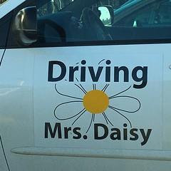mrs daisy