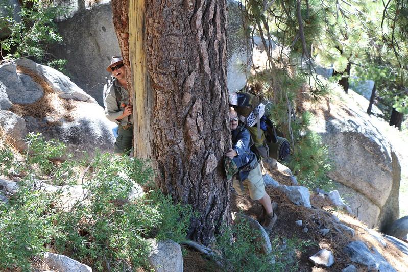 Tree Huggers. They're everywhere!
