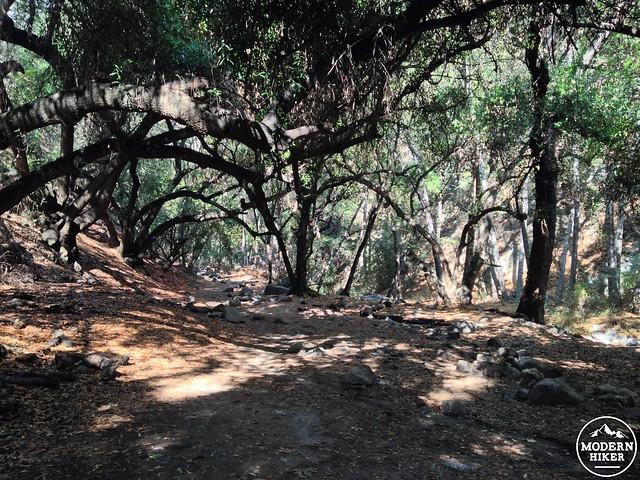 Monrovia-Canyon-Park 22