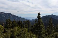 Kings Canyon & Sequoia - 382