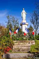 Massiges : la vierge aux abeilles - Photo of Laval-sur-Tourbe