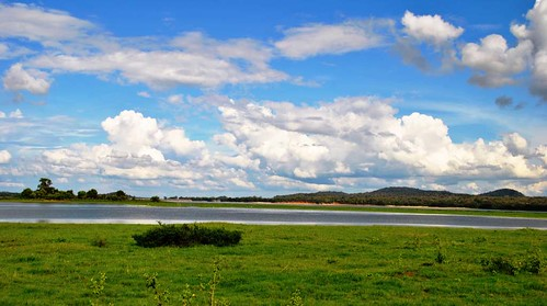 56 Parque Nacional de Minneriya (14)