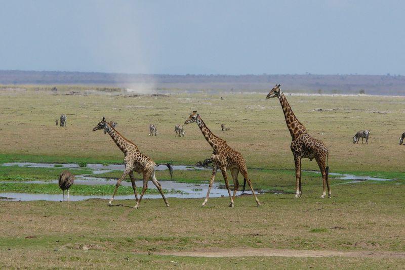 Kenia2007-0656