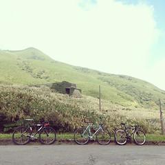 _ . from Taipei,Taiwan👍 . 一片荒涼 🌾🌾 TFC morning ride training . . #njs #condor #lavoro #pista #statigram #fixedgear #instahub #track #taipeifixiecrew #art #bikelife #lifestyle #bike #latergram #自転車 #taipei #ride #life #photo