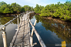 Villa Igang Mangrove Trails in Guimaras
