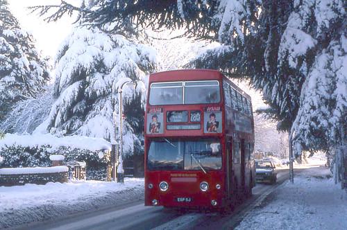 London Transport EGP5J December 1981
