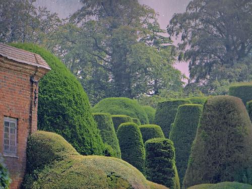 Topiary Unnatural