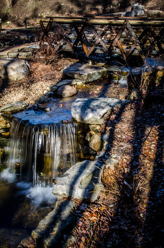 South Carolina Botanical Garden-015
