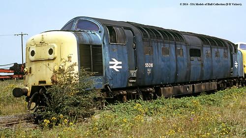 train diesel railway britishrail doncaster southyorkshire gordonhighlander deltic brel class55 55016