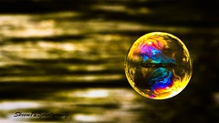 reflection on a soap bubble1