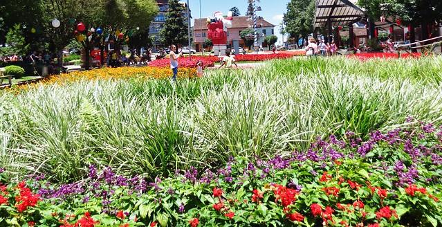 Natal na Praça das Flores