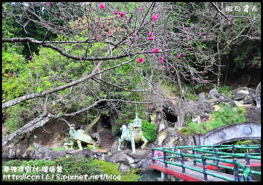 泰雅渡假村-環境篇DSC_0436