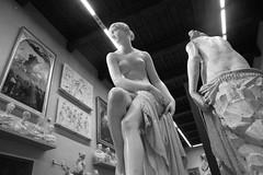 Finding Frenzy in Firenze