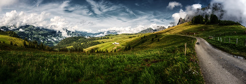 mountains alps schweiz switzerland view suisse meadow wiese berge aussicht svizzera rheintal rhinevalley sargans palfries alvier wartau