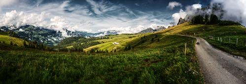 mountains alps schweiz switzerland view suisse meadow wiese berge aussicht svizzera rheintal rhinevalley sargans palfries alvier wartau