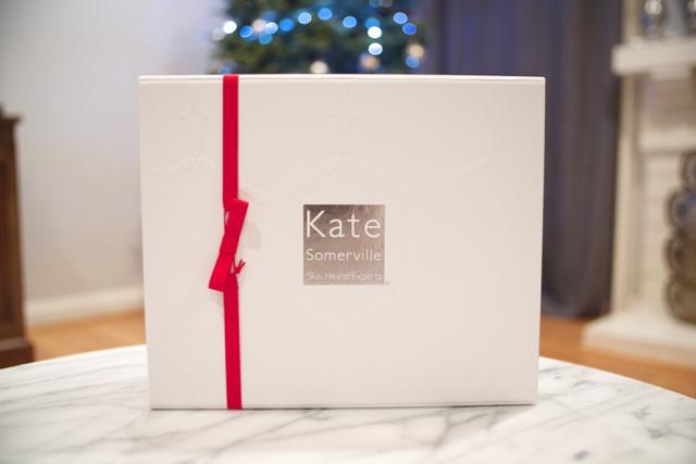 kate somerville gift set