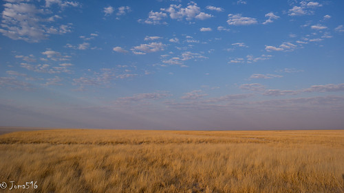 africa blue sky yellow clouds himmel wolken gelb afrika gras blau