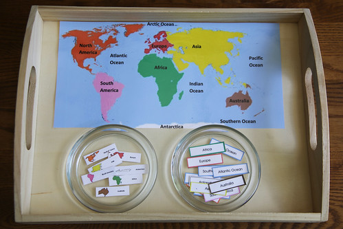 Continent Map Labeling Tray