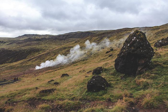Iceland_Spiegeleule_August2014 011