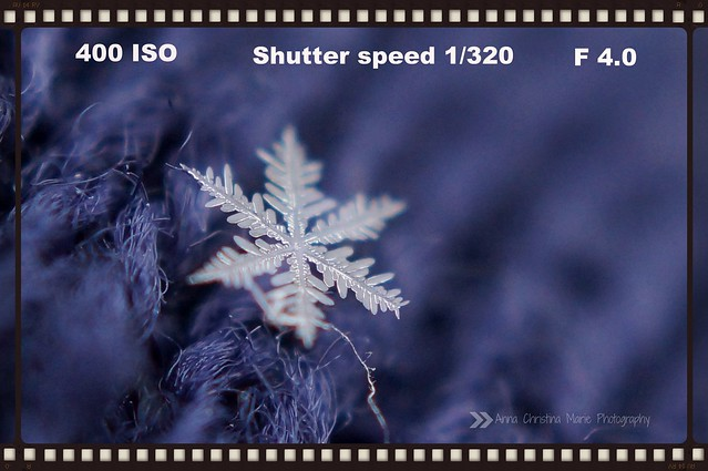 Macro Snowflake Tutorial by Seven Sisters Blog