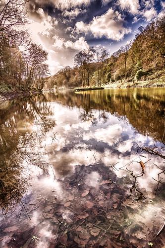 wood autumn lake swansea river nikon december mark tokina hdr suckling penllergare marksuckling