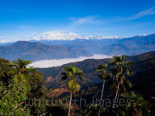 trees nepal cloud mist mountains nature beauty fog landscape asia view lookout snowcapped ridge himalaya viewpoint himalayas gorkha indiansubcontinent tanahun manasalu