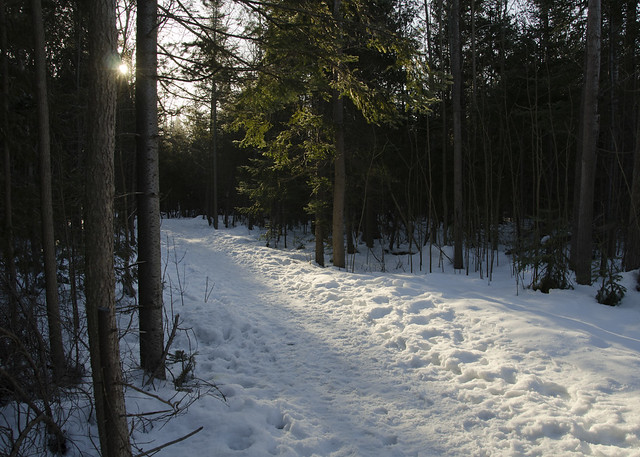 Island Lake Conservation Area in Orangeville