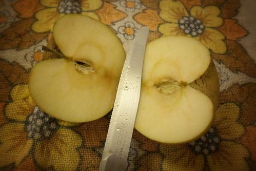 A che assomiglia la metà della mela?