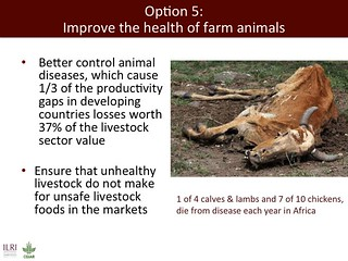 Slide 40: ILRI 2014 one-health presentation