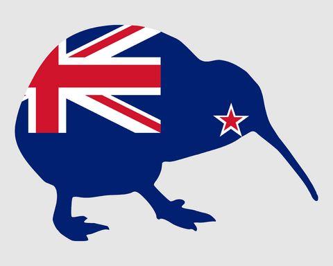 new-zealand-facts-kiwi-bird-new-zealand-flag