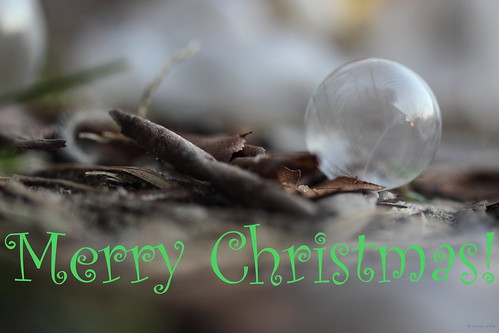 """Frozen Christmas Bubble"""
