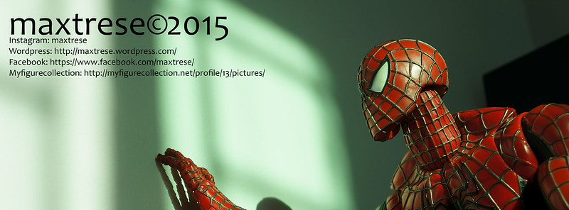 Spider-man for maxtrese 2015
