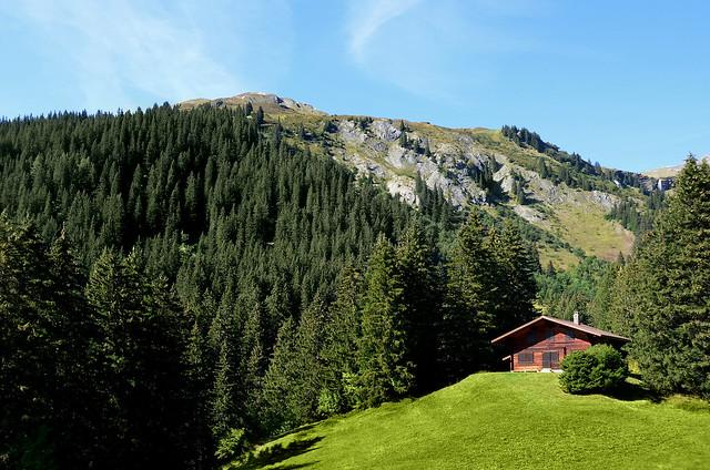 Idílica casita de madera en prados verdes de Suiza