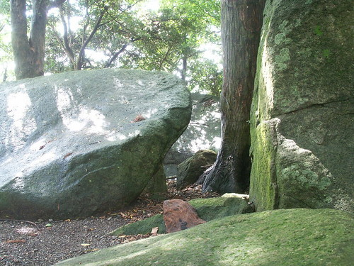 23 宮井戸遺跡(和歌山県)