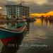 _MG_7103 by Dahari Bin Haji Lisani