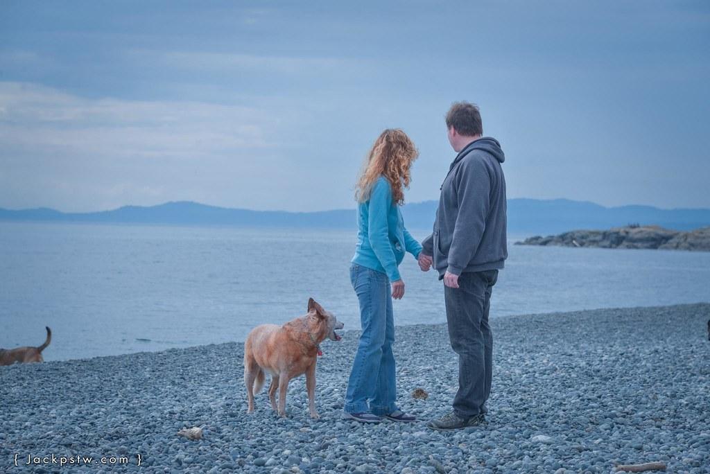 在海邊遇到帶狗散步的夫婦