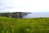 More of Moher