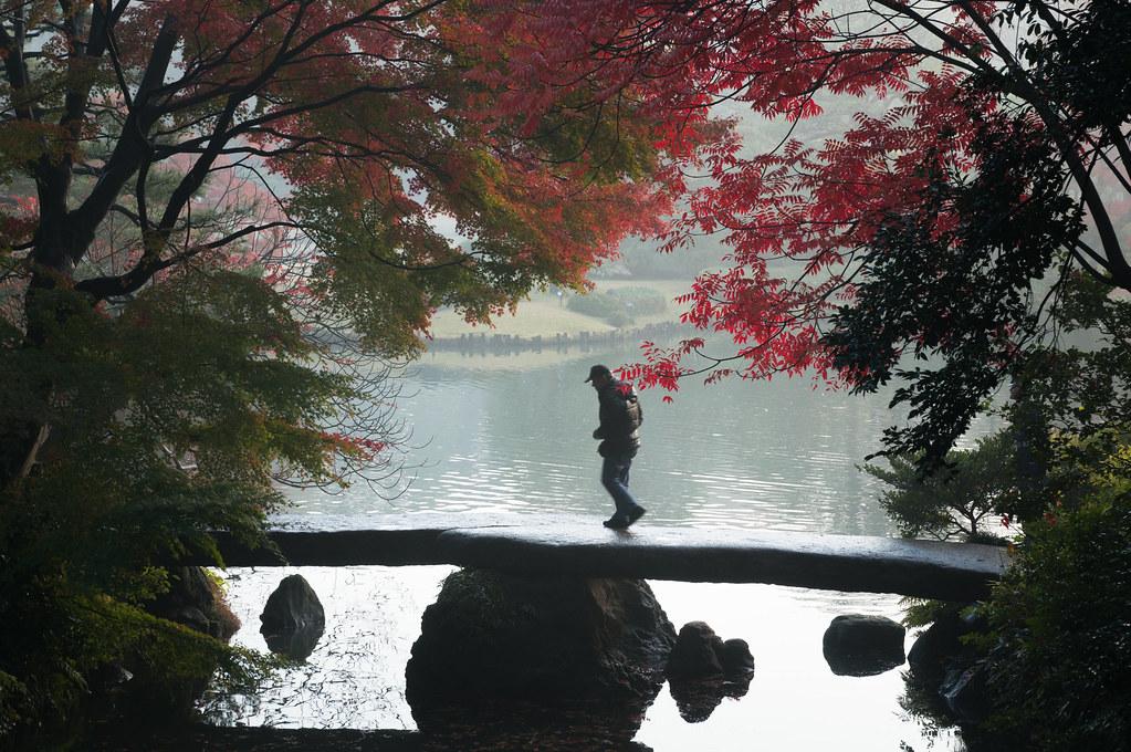 六義園 紅葉 『渡月橋』