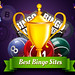 Best Bingo Sites by bingojohnmendes