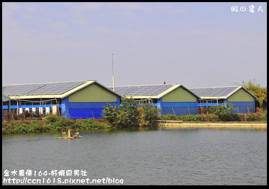 金水農情164-好蝦冏男社_DSC8398