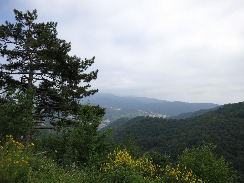 Kesä-heinäkuu 2012 1509
