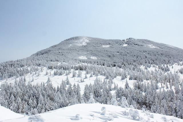 2014-03-09_00023_北横岳