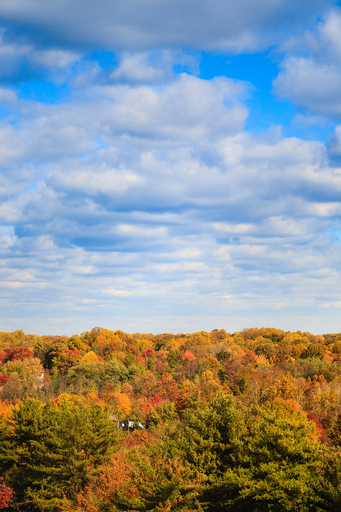 Autumn in Virginia [Flickr]