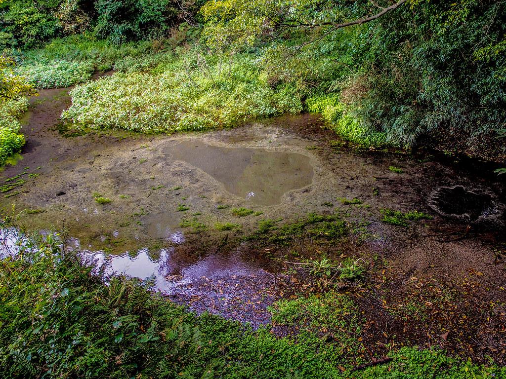 Kakita River Park