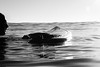 20141128 -surf_7