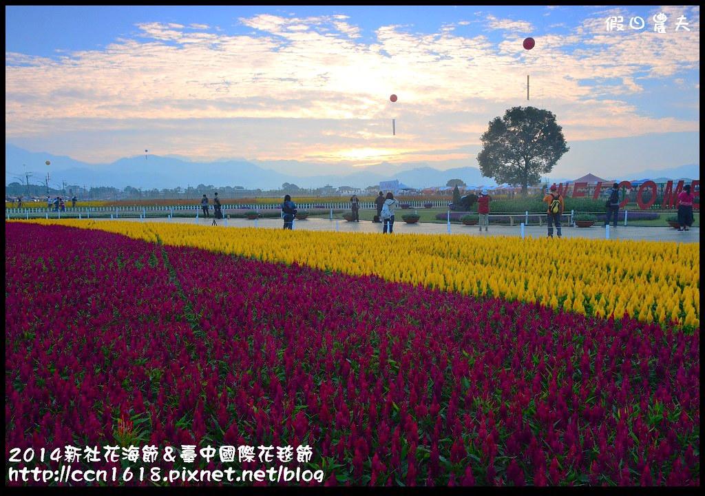 2014新社花海節&臺中國際花毯節DSC_4807