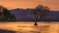 Lake Wanaka / New Zealand